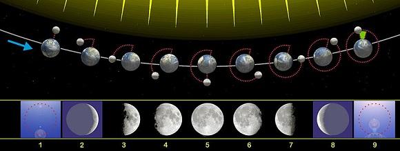 Esquema de fases da Lua